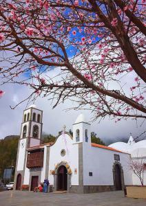 Цветущий миндаль в городке Santiago del Teide